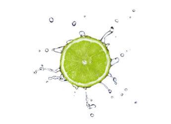 Ţesuturi corporale care se regenerează prin nutriţie