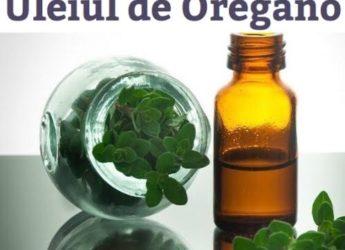 20 de motive ca să folosești uleiul de Oregano